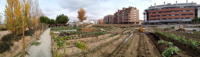 montecarmelo-mediacion04