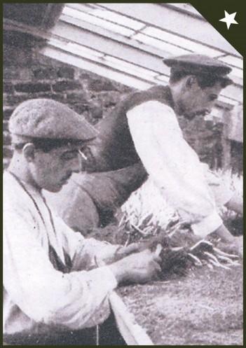 documental-jardineros-madrid